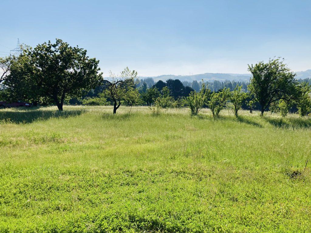 Venta de parcela de agrado terreno campo casa yumbel yapo